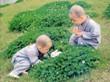 秋水2002